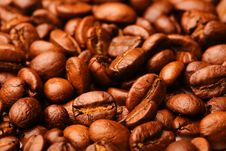 Free Coffee Beans Royalty Free Stock Image - 2600776