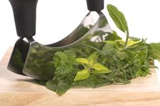 Chopping Fresh Herbs. Royalty Free Stock Images