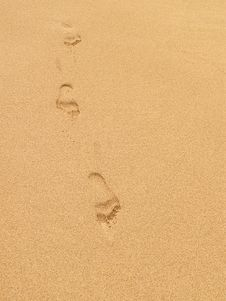 Free Footprints In The Sand Stock Photography - 2602112