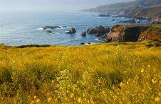 Free California Coast Royalty Free Stock Photography - 2602137