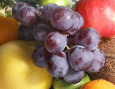 Free Fruits Isolated On White Stock Photography - 2602422