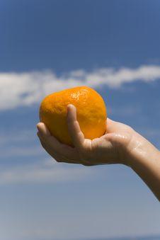 Free Hand Keeps Orange Stock Photo - 2603480