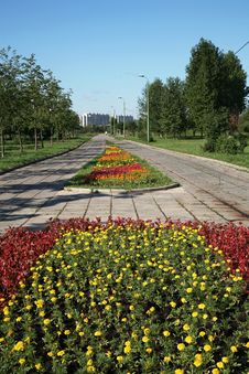 Free Flower Beds In City Park Royalty Free Stock Image - 2603956