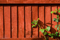 Free Plant Red Background Fence Royalty Free Stock Photography - 26001317