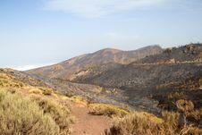 Free El Teide 10 Royalty Free Stock Photo - 26002455
