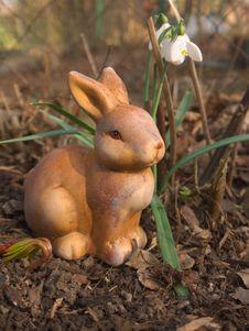 Free Easter Bunny Stock Photos - 26005273