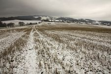 Field In Winter Stock Photo
