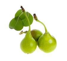 Free Three Pears With Leaves Separately Stock Photography - 26013152