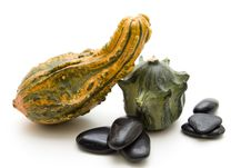 Free Pumpkins And Black Stones Royalty Free Stock Images - 26014099