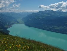 Free Turquoiese Lake Brienzersee Stock Image - 26016701