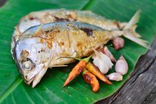 Free Fish Grilled Stock Photography - 26027252