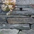 Free Closeup Of Stone Wall Royalty Free Stock Image - 26035986