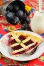 Free Plum Cake Royalty Free Stock Image - 26036156