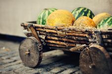Free Autumn Crop Stock Photo - 26033520