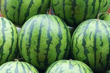 Free Watermelon Stock Photos - 26038293