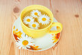 Free Chamomile Tea Royalty Free Stock Images - 26043779