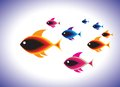Free School Of Colorful Fishes Swimming Together In Sea Royalty Free Stock Photos - 26048368