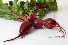 Free Beet  On White Royalty Free Stock Photography - 26043747