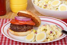 Potato Salad And Burger Stock Photography