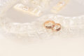 Free Wedding Rings Stock Image - 26057791