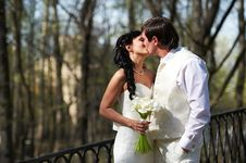 Free Kiss Bride And Groom In Walking Stock Image - 26053851