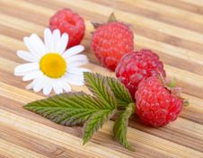 Fresh Raspberries With Leaf And Chamomile Flower Stock Image
