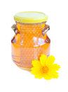 Free Honey Stock Images - 26068854