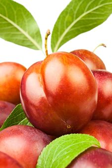 Free Plum Heap Stock Images - 26063364