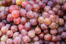 Free Red Grapes Stock Image - 26065311