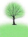 Free Abstract Tree Royalty Free Stock Photos - 26075978
