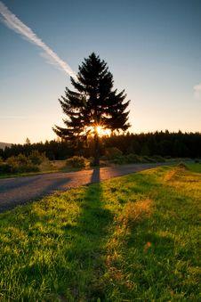 Free Sunrise Royalty Free Stock Photography - 26075547