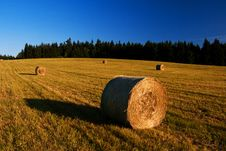 Free Straw Bales Royalty Free Stock Image - 26075586