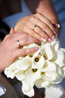 Free Hands With Wedding Gold Rings Happy Newlyweds Stock Images - 26075784