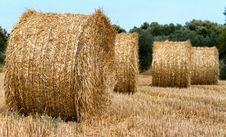 Free Bale Stock Images - 26076084
