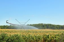 Free Irrigation Equipment Stock Photo - 26076430