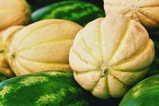 Free Melons And Watermelons On Market Stock Photo - 26079460