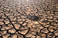 Free Dry Cracked Earth Stock Images - 26085564
