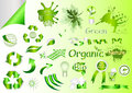 Free Ecological Nature Labels And Symbols Vector Set Stock Images - 26094454