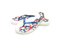 Free Pair Of A Flip Flops On White Background Stock Image - 26099101