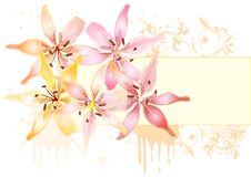 Free Floral Design With Lily And Frame For Text Stock Photography - 26094572