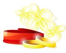 Free Wedding Rings And Box Royalty Free Stock Image - 26095016