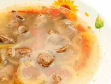 Appetizing Soup With Chicken Giblets Stock Photo