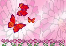 Free Butterfly In Pink Stock Photos - 2611113