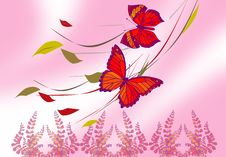 Free Red Butterfly Stock Images - 2611114