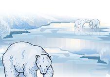 Free Polar Bear On Ice Royalty Free Stock Photo - 2611425