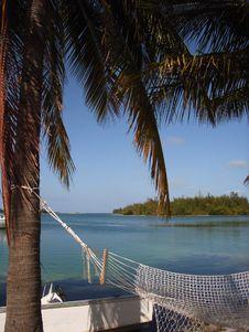 Free Caribbean Hammock Royalty Free Stock Photo - 2612215