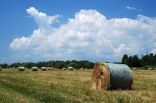 Free Straw Bales Stock Images - 2612254