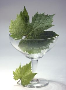 Free Crystal Glass And Green Leaf Royalty Free Stock Images - 2612329