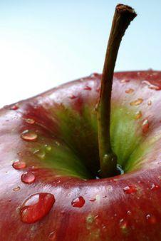 Free Macro Apple Royalty Free Stock Images - 2613789