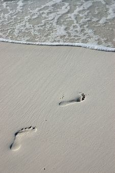 Free Footprints Stock Photo - 2614130